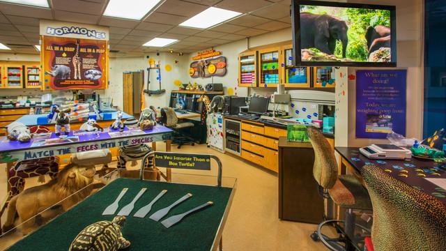 Conservation Station (Foto: Walt Disney World)