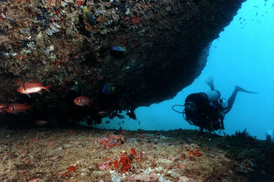 Com ilhas próximas à costa e uma grande biodiversidade marinha, Guarapari (ES) é um dos melhores destinos de mergulho do país. Conta com inúmeros naufrágios que servem como base para a formação de recifes de corais e atraem peixes com formas, tamanho e cores deslumbrantes. O Victory 8B, o maior recife de coral artificial da América Latina, é um ótimo ponto para mergulho autônomo.