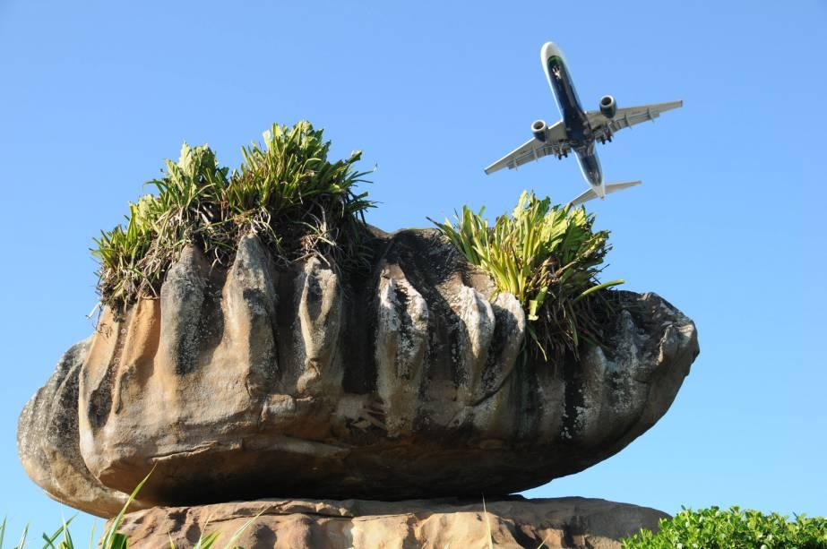 Com 100 mil metros quadrados, o Parque Pedra da Cebola abriga exemplares de Mata de Restinga, Mata Atlântica e vegetação rupestre nativa. Além de um jardim ornamental, conta com um mirante com vista para a cidade de Vitória (ES)