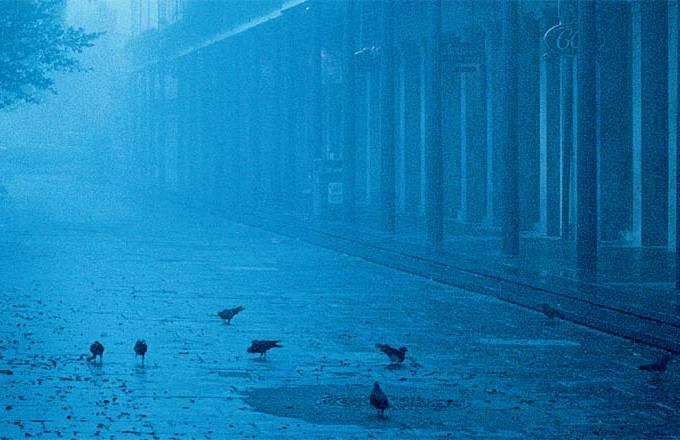 fog-matinal-nas-franjas-do-french-quarter.jpeg