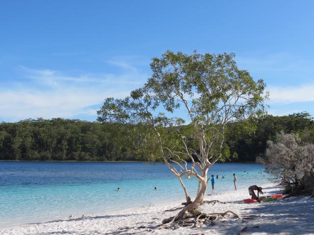 Lagoa em Fraser Island, a ilhona de areia da Costa Leste australiana