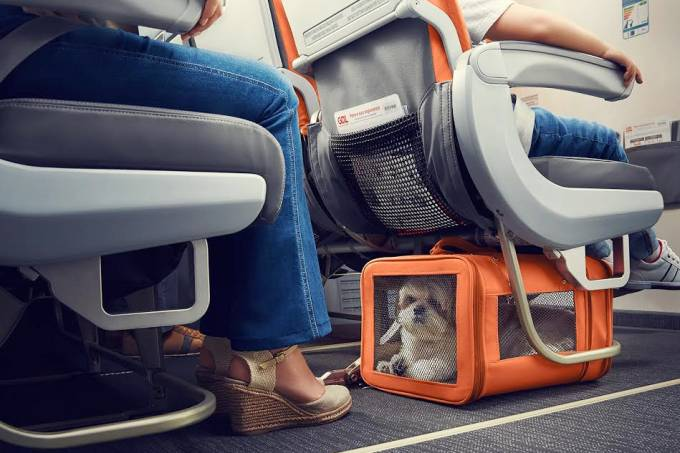 Gol-transporte-cachorro-gatos-voos