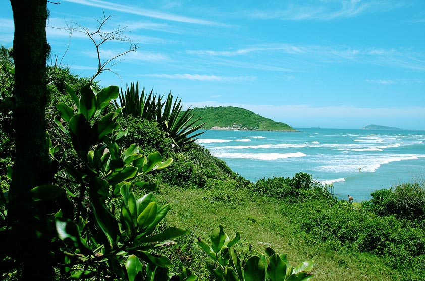 Quase deserta, é boa para surfe, wind e kitesurfe. Acesso fácil, de carro, pela faixa de areia que divide a lagoa da Praia de Ibiraquera. Ao norte, um morro a separa da Praia do Rosa (1h30 a pé).