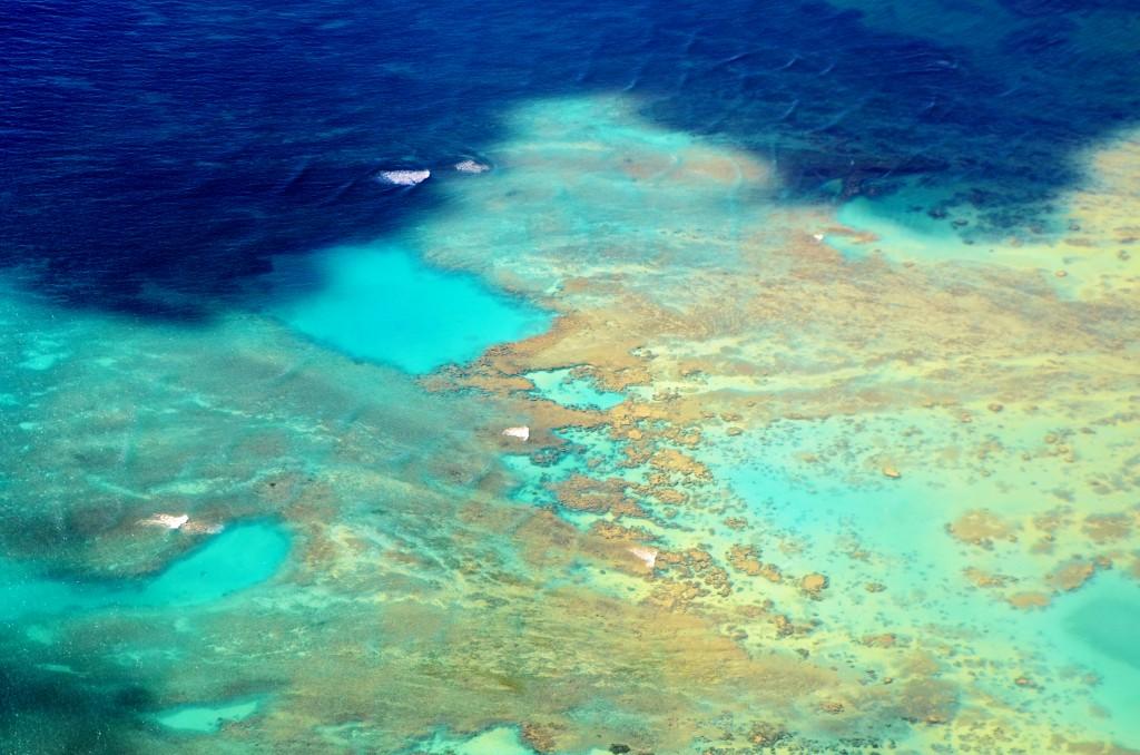 As mil e uma cores do mar havaiano (foto: Anna Laura Wolff)