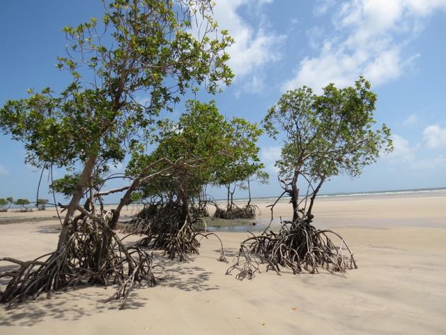 A praia, por onde assamos correndinho