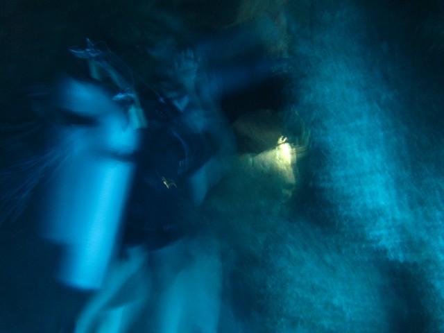 Foto meio paranormal do meu mergulho no Gran Cenote