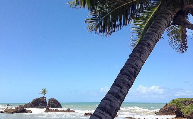 Praia de Tambaba (PB) - na parte não-nudista :p