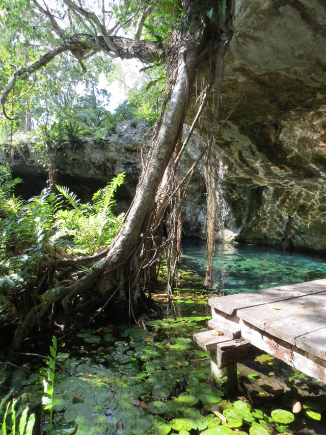 Visual do Gran Cenote de fora