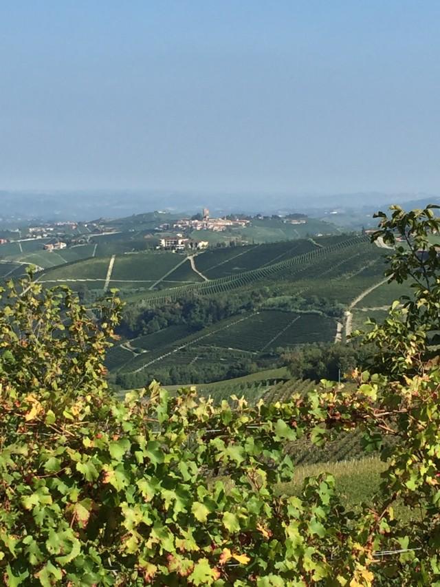 A paisagem da região do Langhe, nos arredores de Barolo