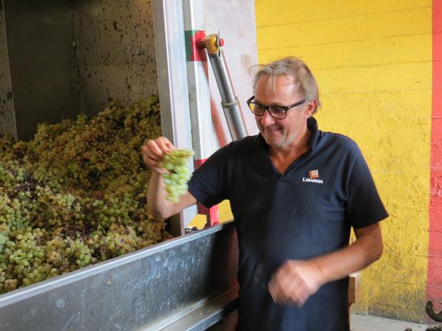 O excêntrico Massa é famoso no Piemonte por ter resgatado a uva autóctone Timorasso do esquecimento. Hoje, ele faz grandes vinhos a partir dessa cepa histórica