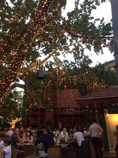 O terraço (e o carvalho todo-poderoso) do The Oaks