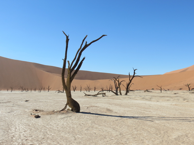 Deadvlei, a parte mais surrealista do parque nacional conhecido como Sossusvlei