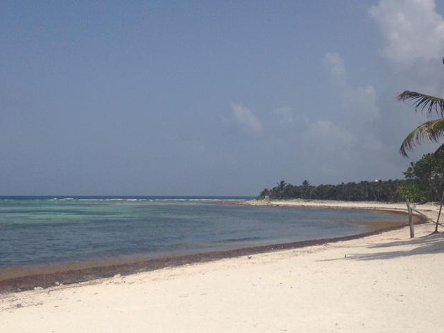 Foto tirada pela Kika em XXXX, uma das praias que estavam um pouco melhor...
