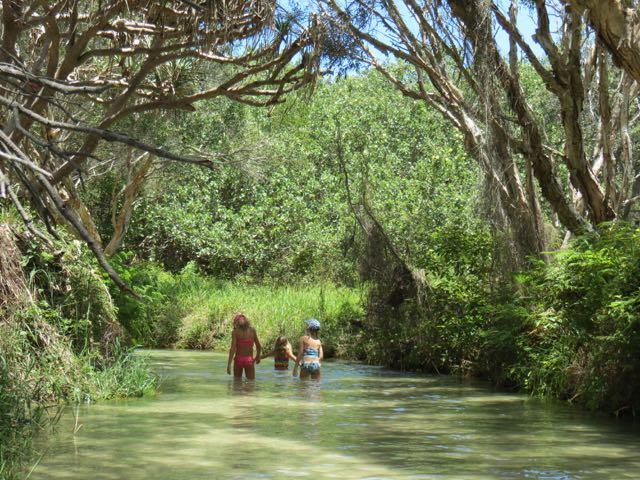 O rio cristalino onde dá para caminhar, mergulhar, flutuar