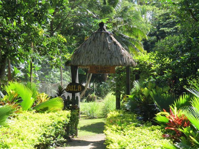 A entradinha linda da horta orgânica