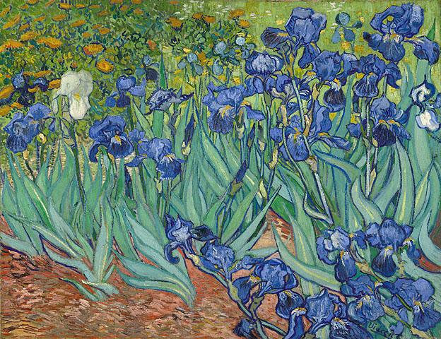 Íris, de Vincent van Gogh, no Getty Center de Los Angeles