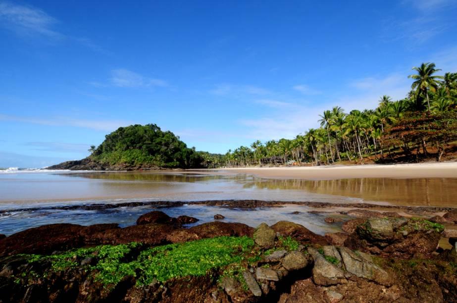 Itacaré, na Bahia, empolga os visitantes com seu belíssimo conjunto de praias protegidas pela Mata Atlântica e sua variada gama de atividades