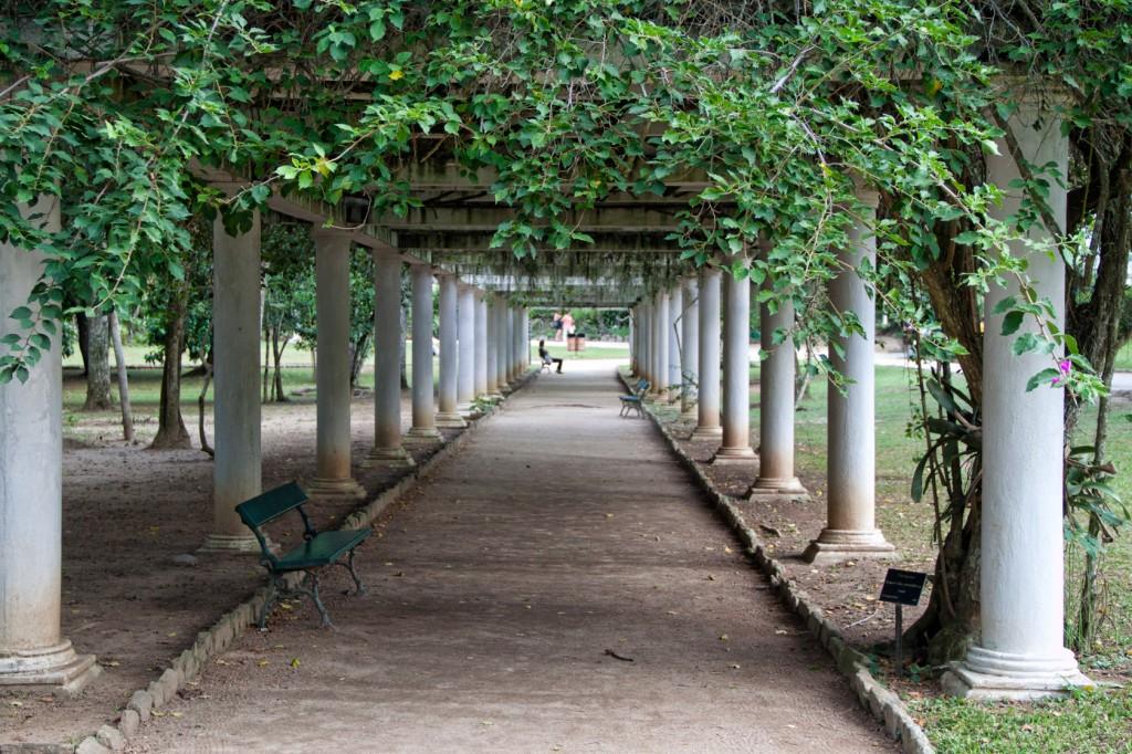 Jardim Botânico do Rio é cheio de cantinhos interessantes. (Foto: She paused 4 photo/Flickr/creative commons)