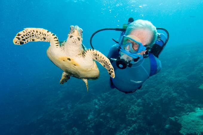 jmc  15-01-20  JMC underwater with Sea Turtle
