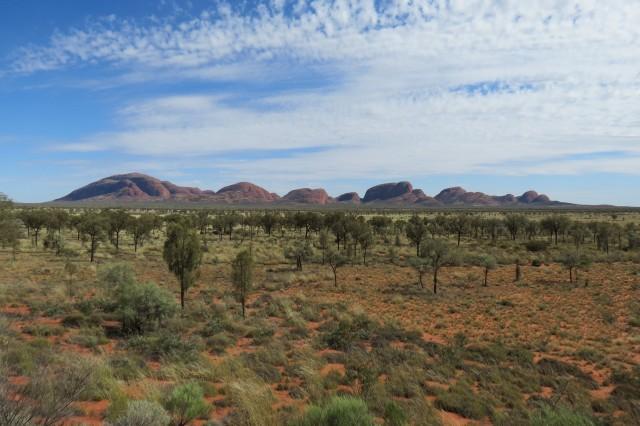 36 cucurutos que emergem do nada a 35 quilômetros de Uluru