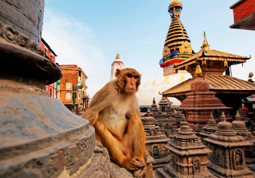 Templos em Kathmandu, Nepal