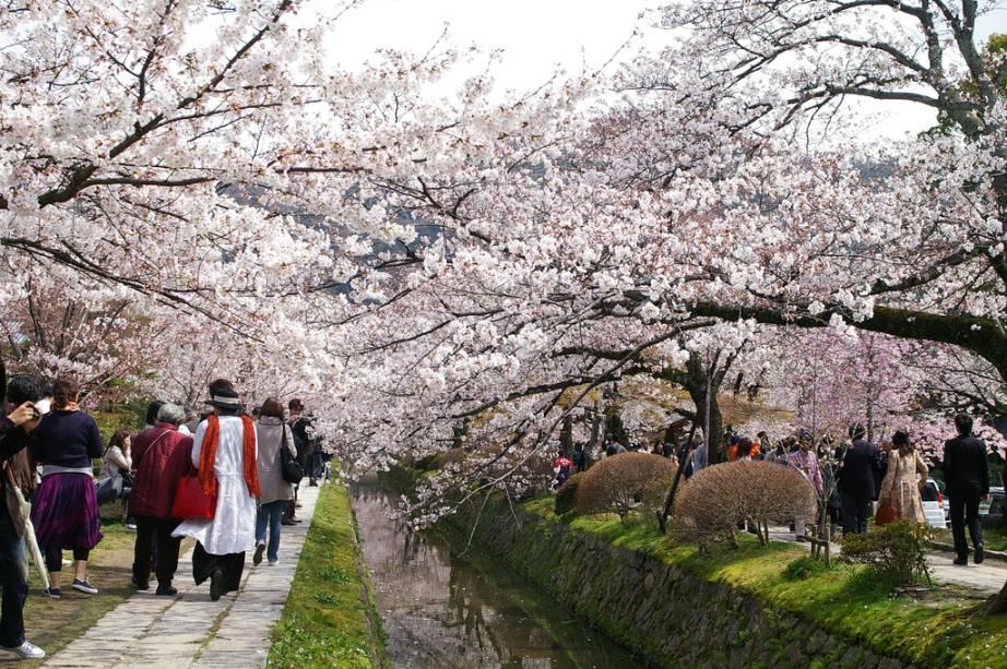 """O Caminho do Filósofo, uma cênica alameda em um dos bairros mais tradicionais de <a href=""""http://viajeaqui.abril.com.br/cidades/japao-kyoto"""" rel=""""Kyoto"""" target=""""_blank"""">Kyoto</a>"""