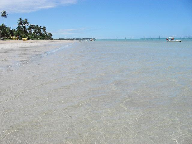 A água transparente do mar de Maragogi (foto: Ludmilla Balduino)