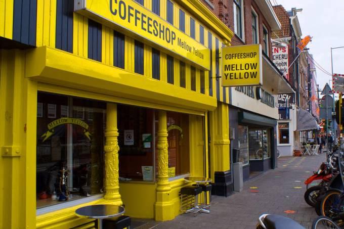 mello yellow – Amsterdã