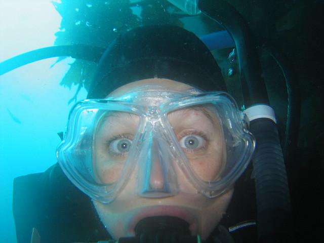 Paranoia subaquática: todo mundo passa por isso