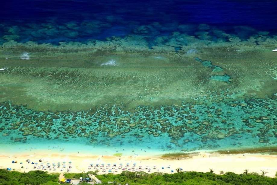 Recife de corais nas Ilhas Miyako, Okinawa