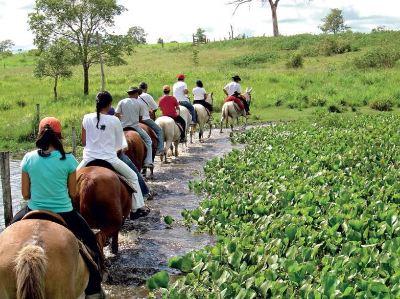 O passeio a cavalo permite chegar a lugares que seriam impossíveis de alcançar a pé ou de caminhão. Em algumas pousadas é possível acompanhar o manejo do gado junto com os peões no Pantanal (MT e MS)