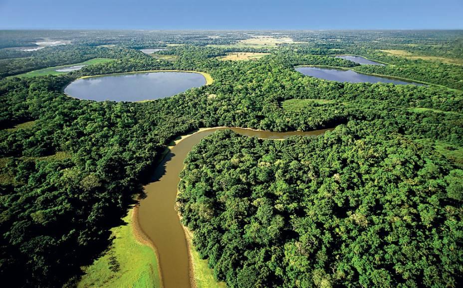 A maior planície inundável do planeta é um refúgio para peixes, anfíbios, répteis, aves e mamíferos. O Pantanal (MT e MS) é um dos melhores lugares no mundo para a observação de vida selvagem. Segundo a ONG SOS Pantanal, 85% do bioma ainda está preservado