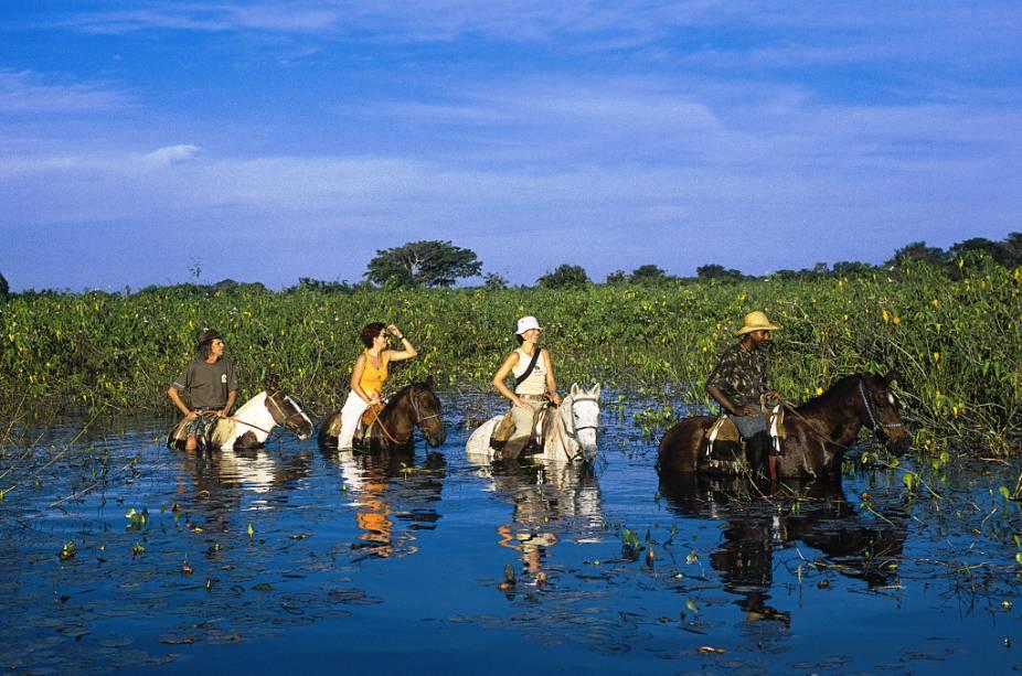 O passeio a cavalo permite cegar em lugares de difícil acesso, que seriam impossíveis de alcançar de carro ou a pé. é uma excelente forma de conhecer o Pantanal (MT e MS) e ter um contato mais próximo com os peões