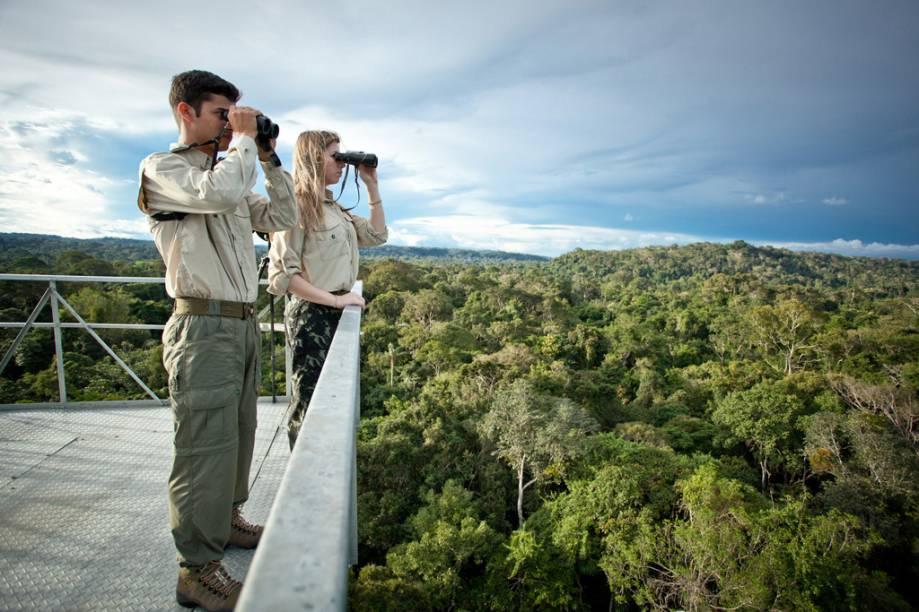 Torres de observação na Amazônia permitem observar espécies acima das copas das árvores. Animais como araras, tucanos, aves de rapina e macacos, que seriam difíceis de ver do chão da floresta, são achados facilmente quando se está a uma altura de 50 m
