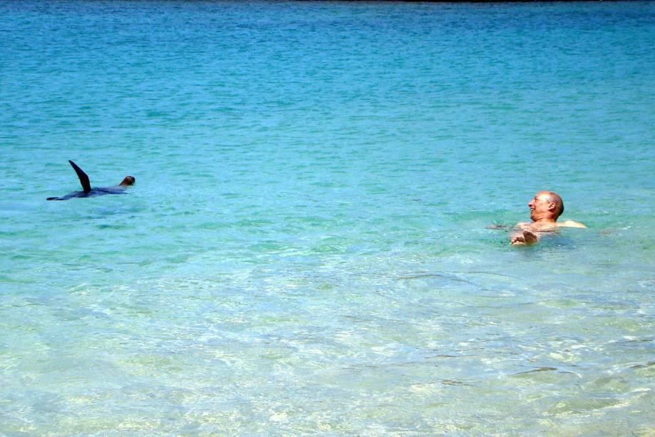 """Os <strong>leões-marinhos-de-<a href=""""http://viajeaqui.abril.com.br/cidades/equador-galapagos"""" rel=""""Galápagos"""" target=""""_self"""">Galápagos</a></strong> são muito brincalhões. Esse aqui estava acenando para a foto"""