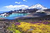 North Cascades National Park - Thinkstock