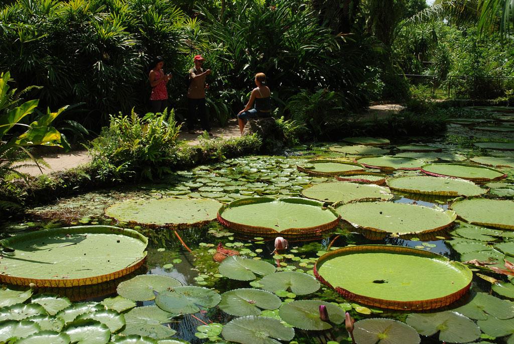 Parque Emílio Goeldi em Belém (PA)