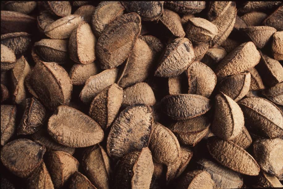 Um dos principais produtos de exportação amazônico, a castanha-do-pará pode ser achada em abundância no estado do Pará