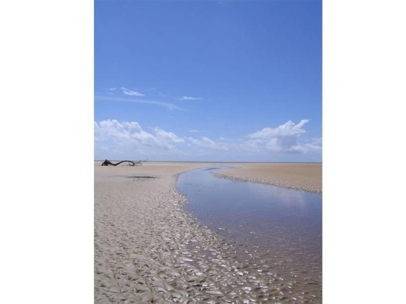 Localizada no encontro dos rios Amazonas e Tapajós com o oceano, a Ilha de Marajó (PA) concentra praias atraentes, igarapés e é famosa pelos búfalos, que são encontrados em abundância