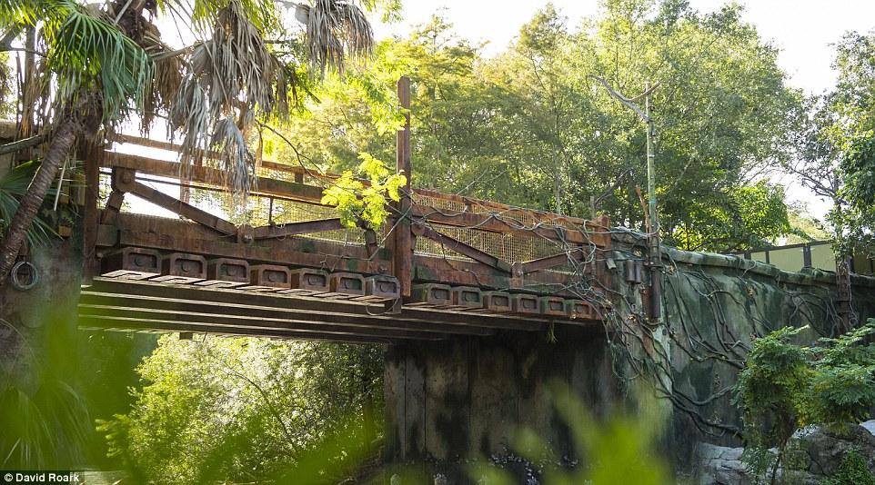 A ponte que liga o restante do parque ao mundo de Avatar, no Animal Kingdom