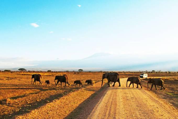 Parque-Amboseli-Quenia