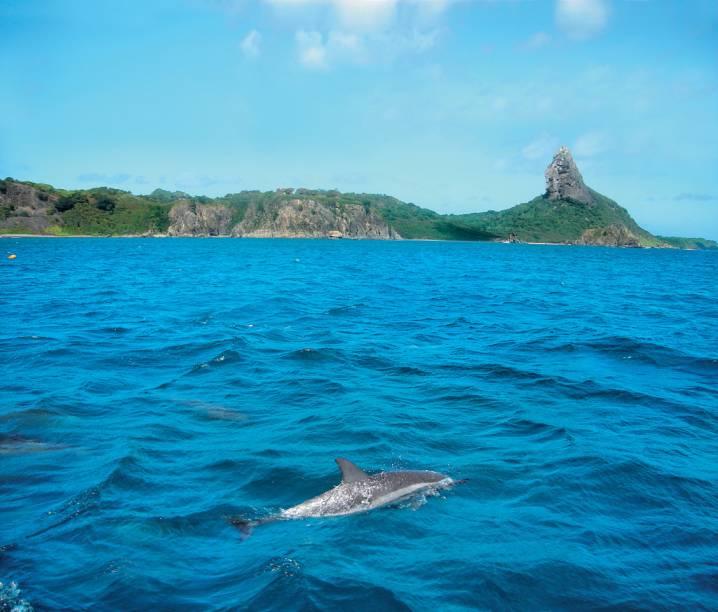 O Morro do Pico fica na Praia da Conceição, que abriga o Duda Rei, um dos bares de praia mais badalados de Fernando de Noronha (PE)