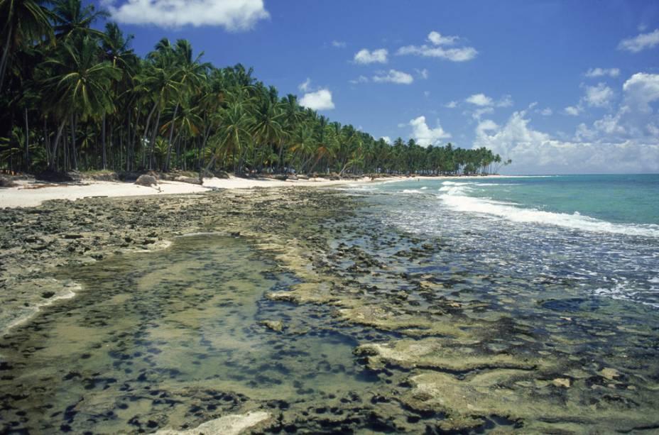 Com ondas fracas e estreita faixa de areia, a Praia de Tamandaré tem quiosques animados e piscinas naturais