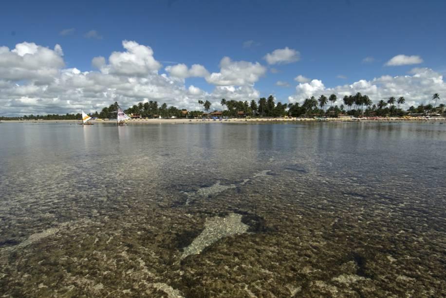 Jangadas levam os turistas às piscinas naturais com águas cristalinas