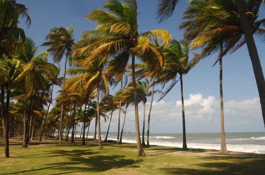 Praia Toquinho é delimitada pelo Rio Sirinhaém, que separa os municípios de Ipojuca e Tamandaré