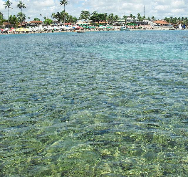 Os recifes lindões de Porto de Galinhas (foto: Ludmilla Balduino)