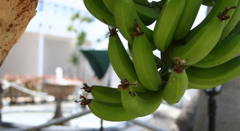Potássio não falta no Spice, resort nas Ilhas Canárias / Divulgação