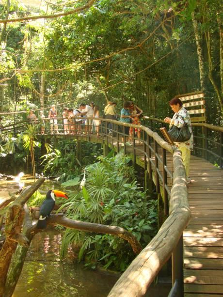O dinheiro arrecadado com a venda de ingressos ajuda nos programas de educação ambiental, conservação e reprodução em cativeiro de aves ameaçadas de extinção no Parque das Aves, em Foz do Iguaçu (PR)