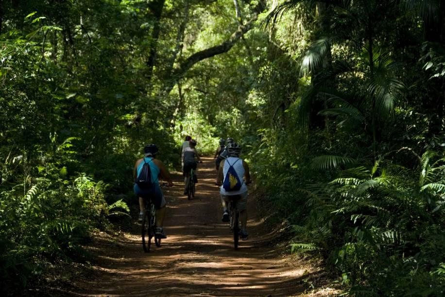 O passeio da Trilha do Poço Preto, no Parque Nacional do Iguaçu (PR), começa com uma pedalada de 9 km. Após um descanso à beira do Rio Iguaçu, é hora de pegar uma lancha para navegar pelo rio e curtir o pôr do sol no final da tarde