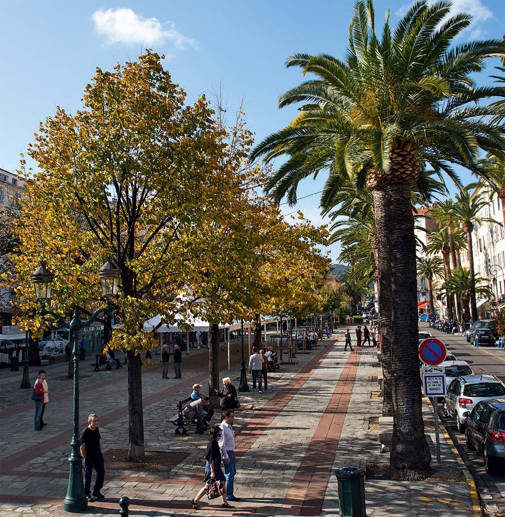 A Place Foch, a rua principal de Ajaccio, na Córsega